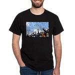 Thunderbirds Over Academy Black T-Shirt