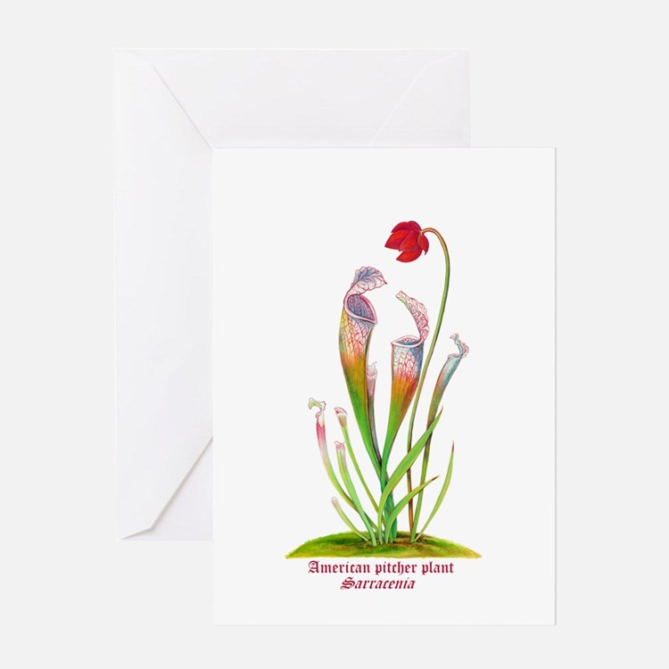 American Pitcher Plant Greeting Card