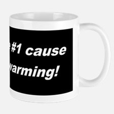 Global Warming Fraud Mug