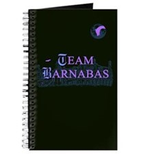 Team Barnabas Color Journal