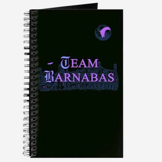 Team Barnabas Color Journal