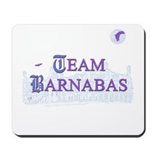 Team Barnabas Color Mousepad