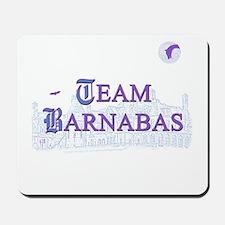 Team Barnabas Color Mousepad