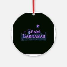 Team Barnabas Color Ornament (Round)