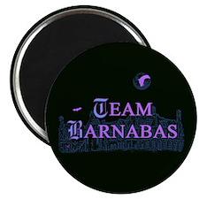 Team Barnabas Color Magnet