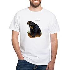 Sun Bear Shirt