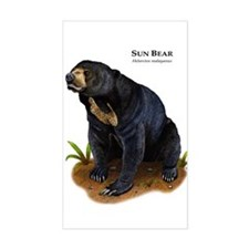 Sun Bear Decal