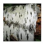 Birch Tree Tile Coaster