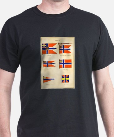 Old Norway Flags T-Shirt