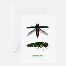 Emerald Ash Borer Greeting Card