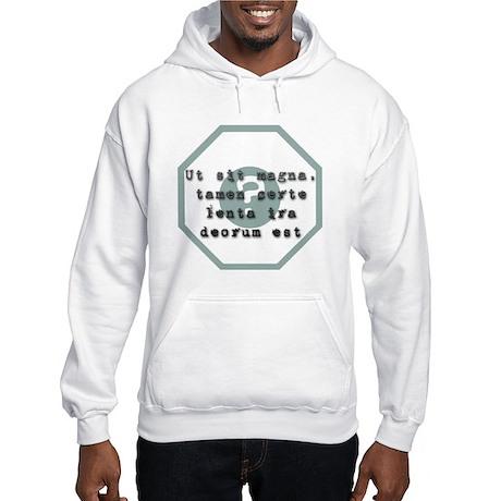 Ut sit magna... Hooded Sweatshirt