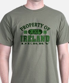 Property of Derry T-Shirt