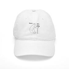 Bipolar Countdown D Baseball Cap