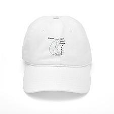 Bipolar Countdown H Baseball Cap
