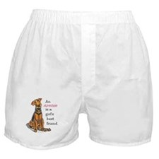 Airedale Terrier Lover Boxer Shorts