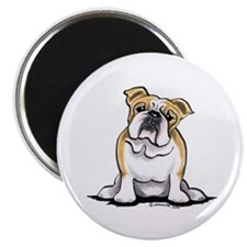 Cute English Bulldog Magnet