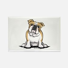 Cute English Bulldog Rectangle Magnet