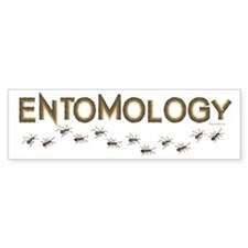 Entomology Bumper Sticker