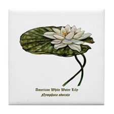 White Water Lily Tile Coaster