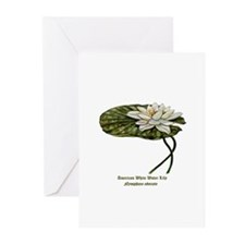 White Water Lily Greeting Cards (Pk of 20)