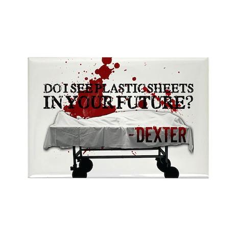 Dexter Rectangle Magnet (100 pack)