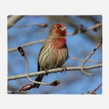 House finch Throw Blanket