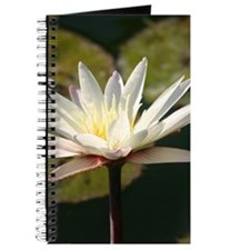 San Francisco Botanical Gifts Journal