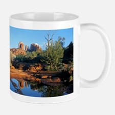 cathedral reflection Mugs