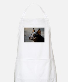 Cute Cattle dog Apron