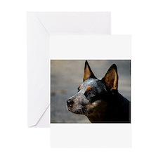 Cute Cattle dog rescue Greeting Card