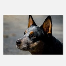Unique Cattle dog rescue Postcards (Package of 8)