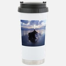 AuCaDo Stainless Steel Travel Mug