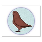 French Mondain Pigeon Small Poster