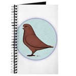 French Mondain Pigeon Journal