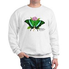 Emerald Swallowtail Butterfly Sweatshirt