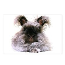 6x4 Bunny Postcards (Package of 8)