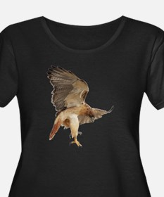 Unique Red tailed hawk T