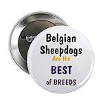 Belgian Sheepdog Best Breeds Button