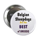 Belgian Sheepdog Best Breeds 2.25