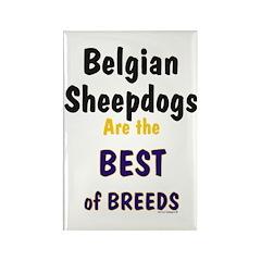 Belgian Sheepdog Best Breeds Rectangle Magnet