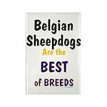 Belgian Sheepdog Best Breeds Rectangle Magnet (10