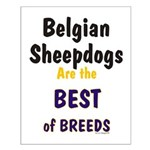 Belgian Sheepdog Best Breeds Small Poster
