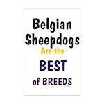 Belgian Sheepdog Best Breeds Mini Poster Print
