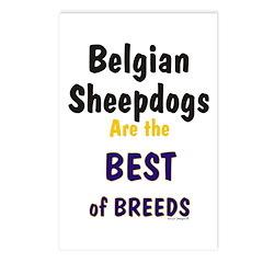 Belgian Sheepdog Best Breeds Postcards (Package of