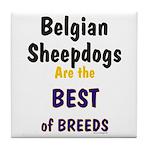 Belgian Sheepdog Best Breeds Tile Coaster