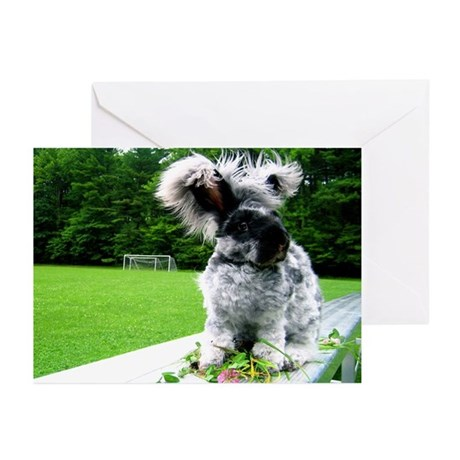 5x7 Bunny Greeting Cards (pack of 20)