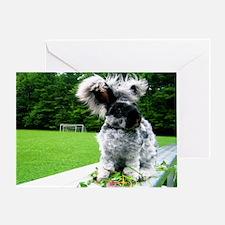 5x7 Bunny greeting card