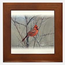 Male Cardinal Framed Tile