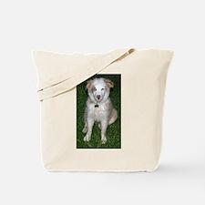 Funny Australian shepard Tote Bag