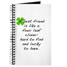 Cute St. patrick's day Journal